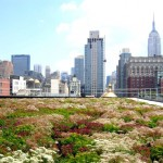 NYC Green Roof Tax Credit Survery