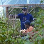 First Annual Black Farmers and Urban Gardeners Conference