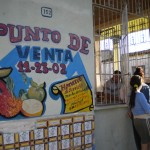 Transition and Resilience in Cuban Agriculture